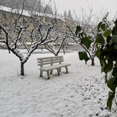Jardín con nieve